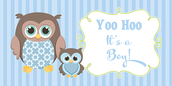 owl boy baby shower banner