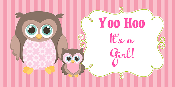 Owl Girl Baby Shower Banner