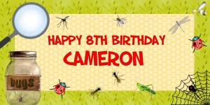 Bugs Insects Birthday Party Banner