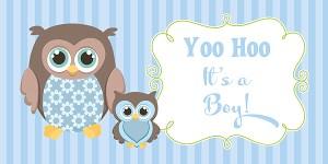 Owl Boy Baby Shower Banner