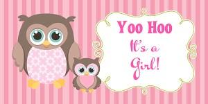 Owl Girl Baby Shower Banner