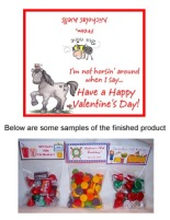 Valentine's Day Horse Party Bag Toppers Favors w/Recloseable Bags